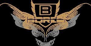 Bores Logo Gold