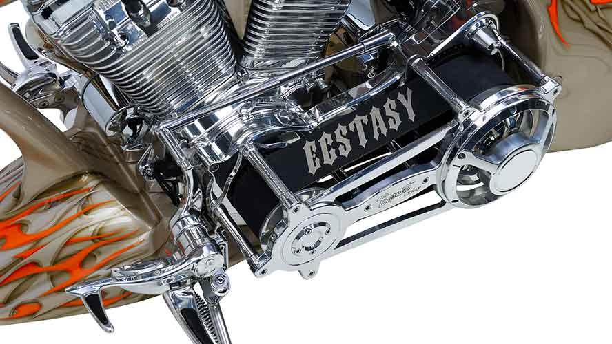 Custom Bike Ecstasy-Beltdrive